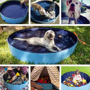 Dog Swimming Pool By Doggy Bunch