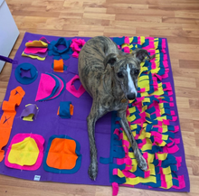 Load image into Gallery viewer, Snuffle Mat By Doggy Bunch