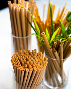 Bamboo Fiber Straw (Cocktail Straw)-5""