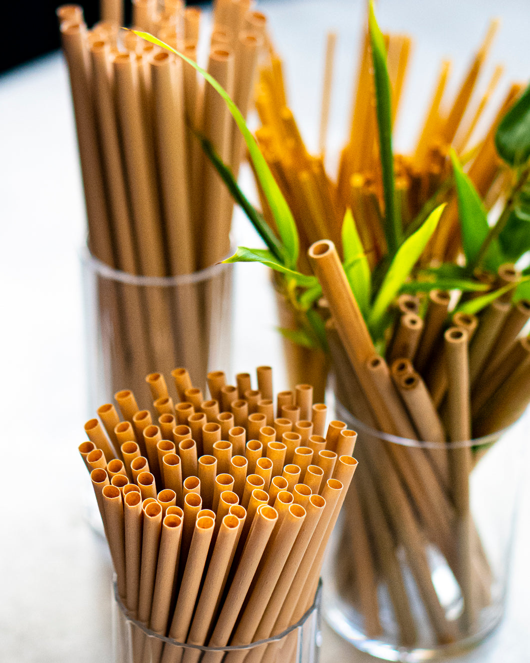Bamboo Fiber Straw (Cocktail Straw)-5