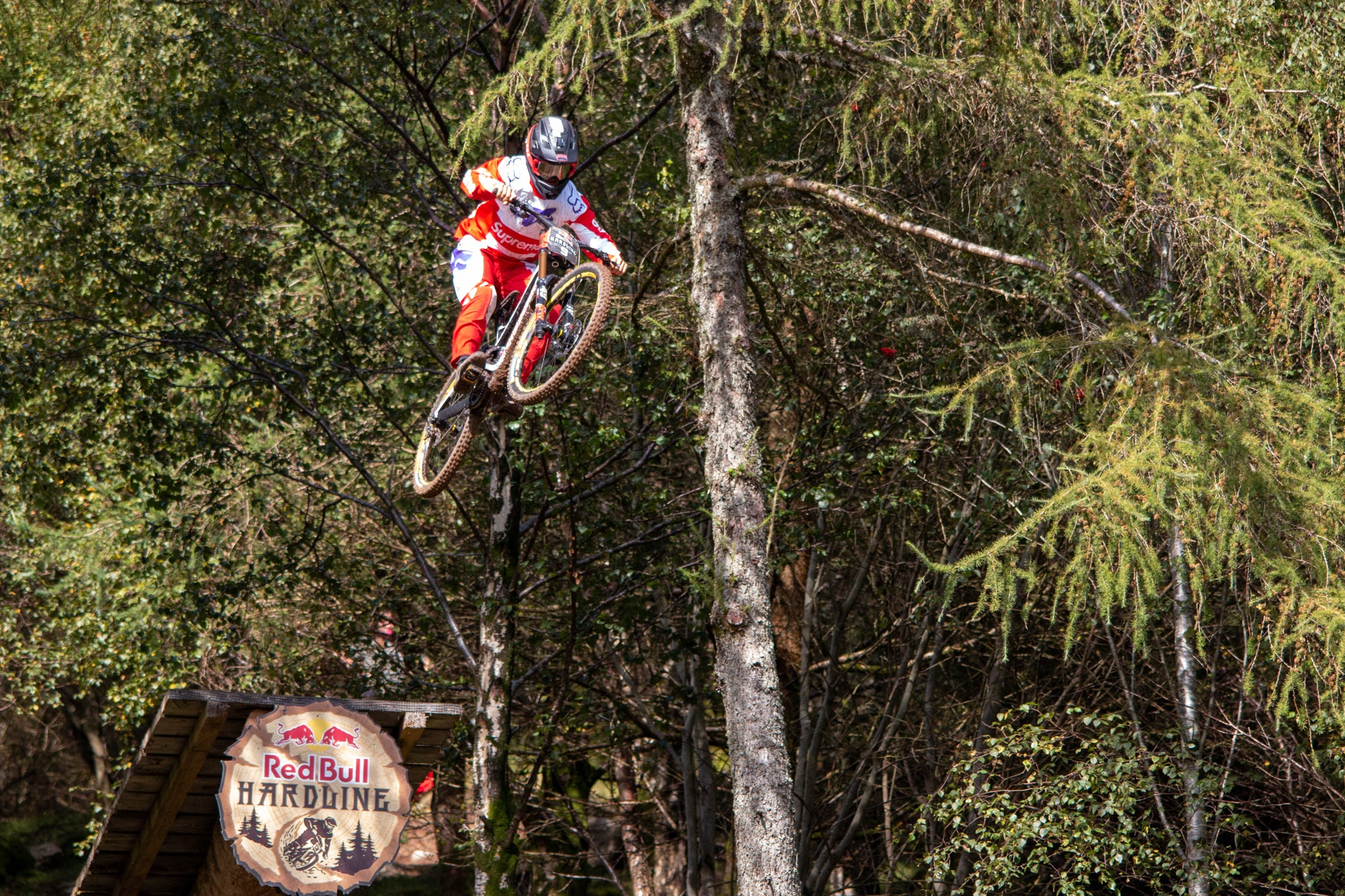 Red Bull Hardline 2019 - Out of Woods