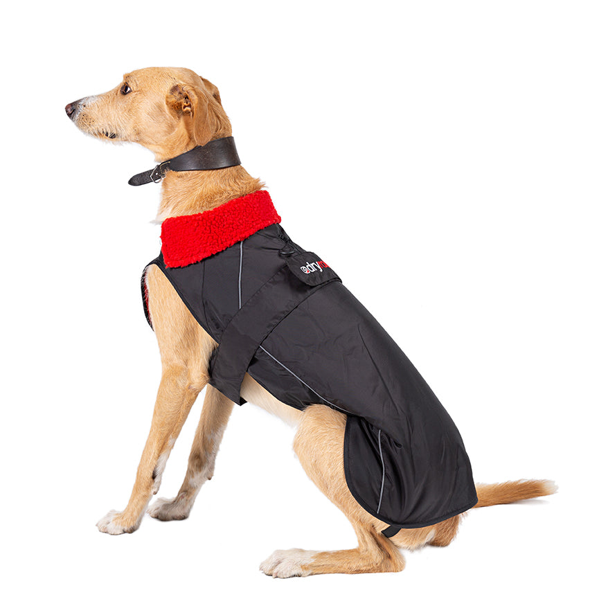 XL, dog robe black red side XL