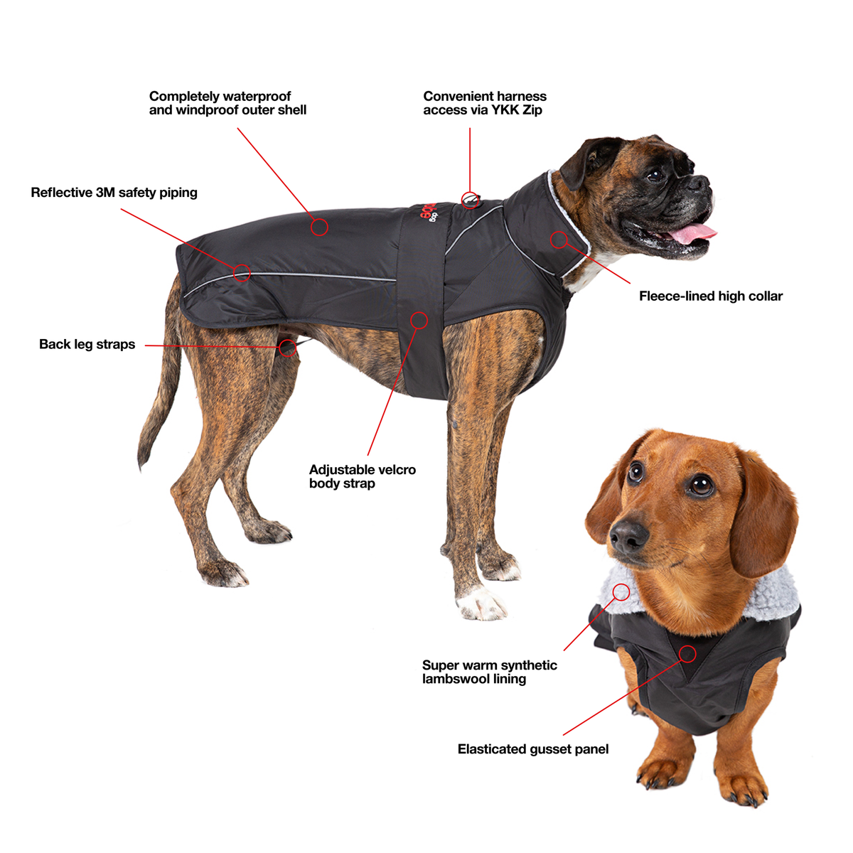 1| dryrobe dog robe graphic