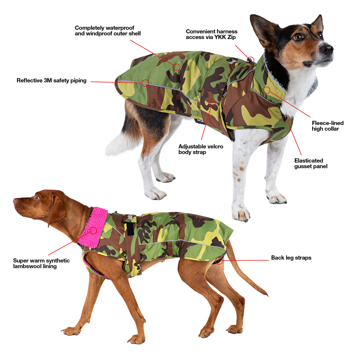 1| dryrobe dog infographic showing features