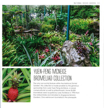 Load image into Gallery viewer, Images of Singapore Botanical Gardens