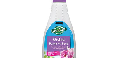 Houseplant Orchid Pump 'n' Feed