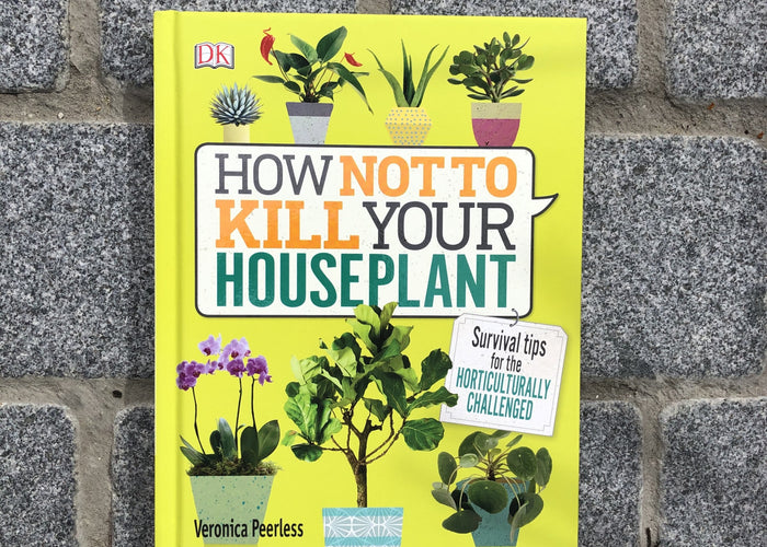 How not to kill you houseplant