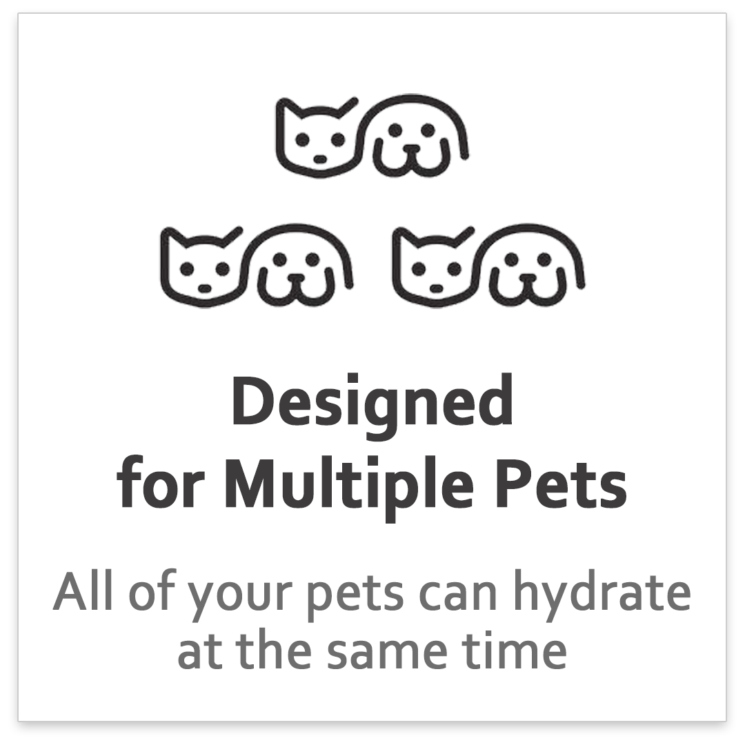 Designed for Multiple Pets