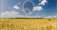 47 Wheat Field and Sky Memorial Candle with Photo