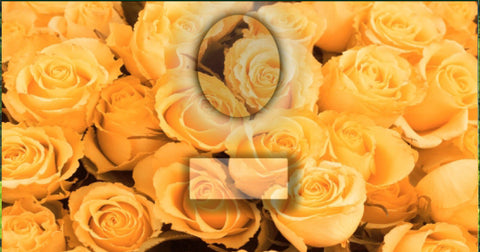 48 Yellow Roses Memorial Candle with Photo