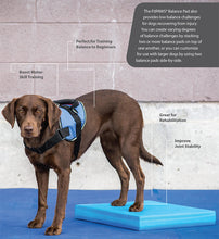 Load image into Gallery viewer, FitPAWS® Balance Pad