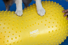 Load image into Gallery viewer, FitPAWS® TRAX Peanut 40cm