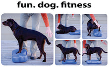 Load image into Gallery viewer, CanineGym® K9FITbone