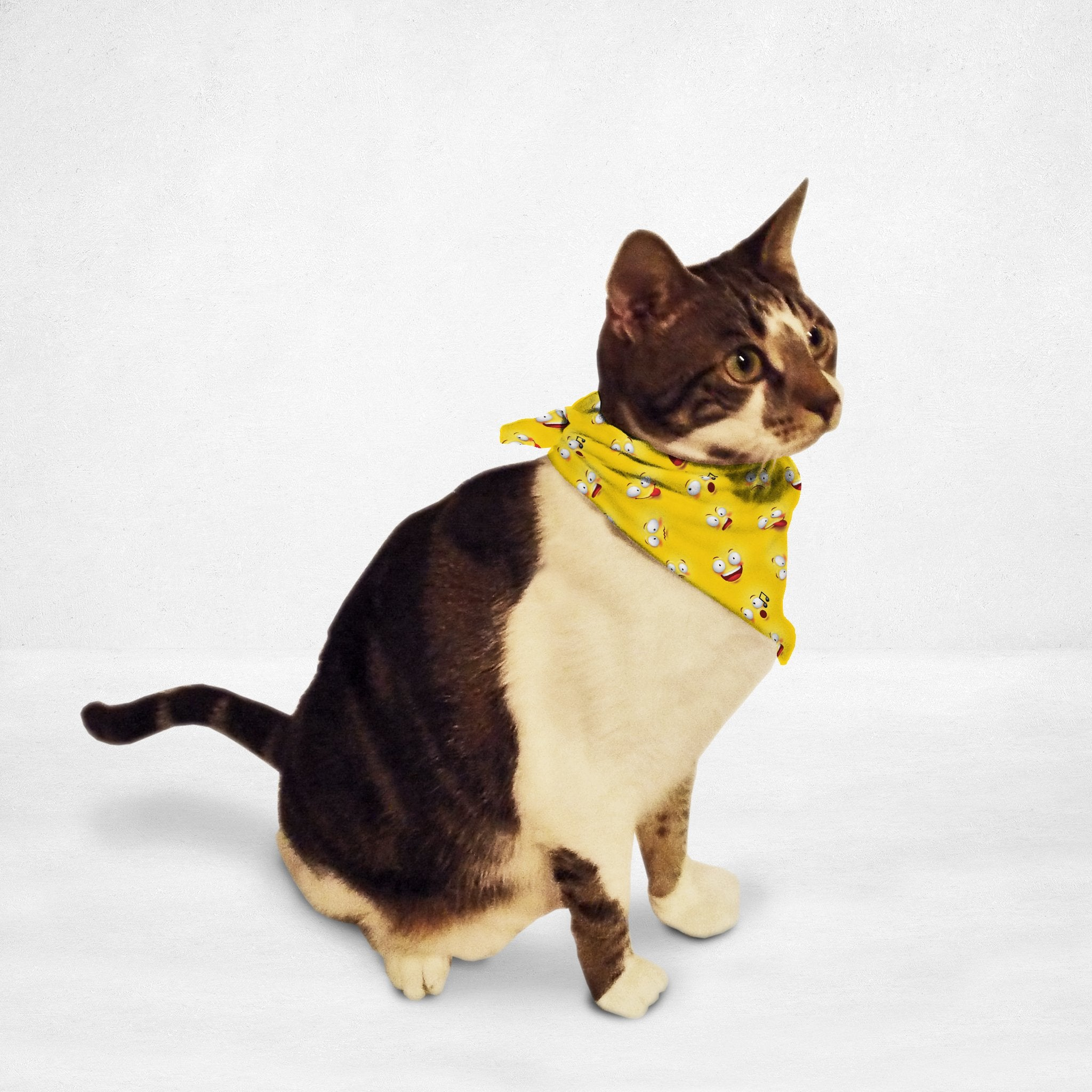 Emoji Wall Cat & Dog Bandana