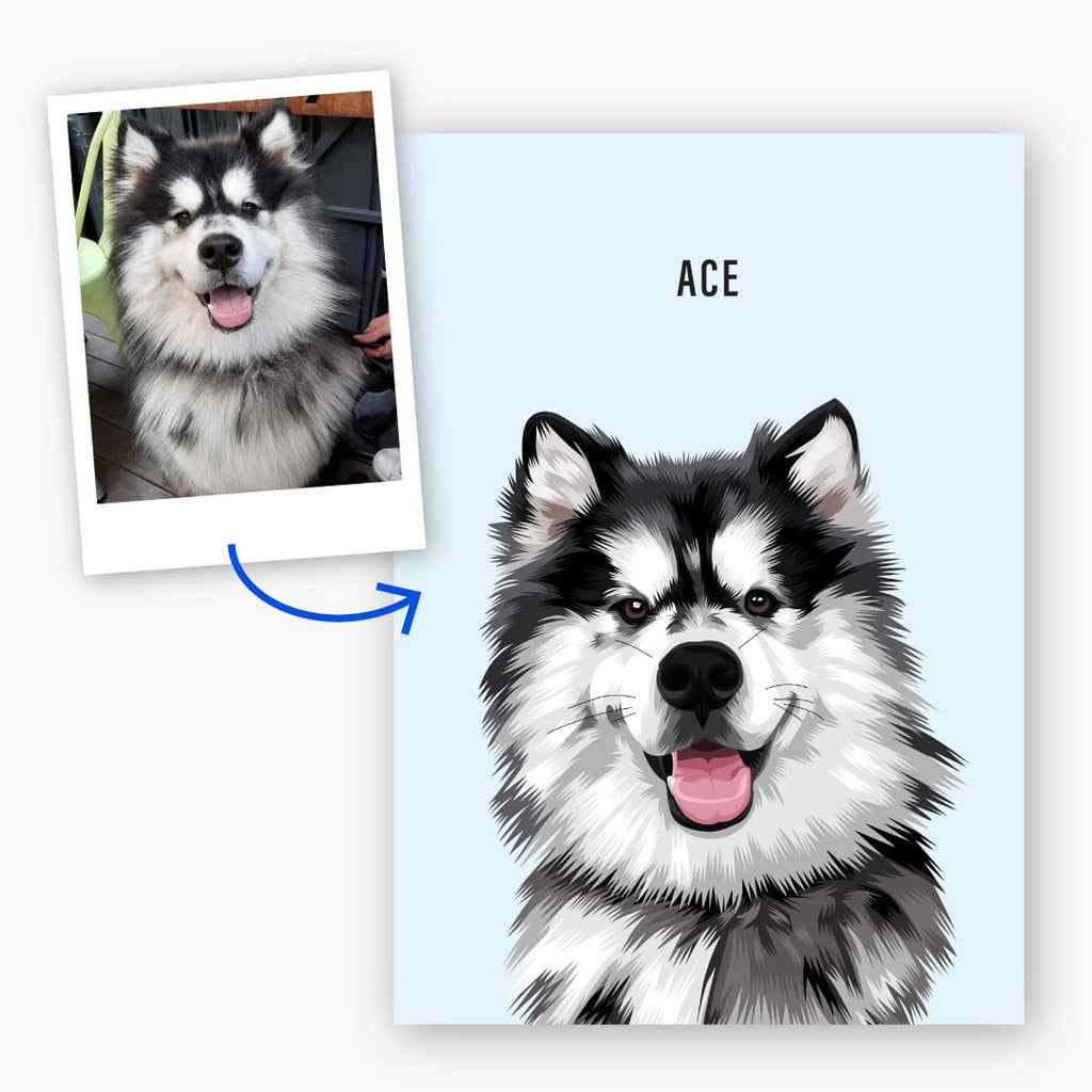 pet portrait before and after