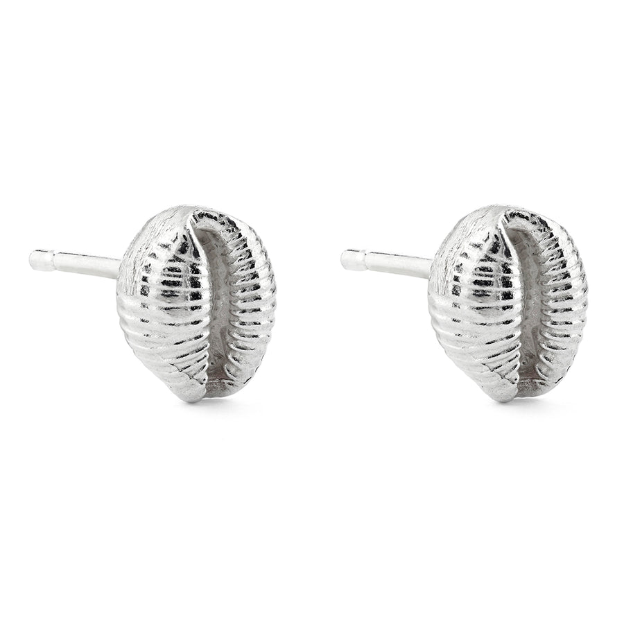 Mini Silver Cowrie Shell Studs