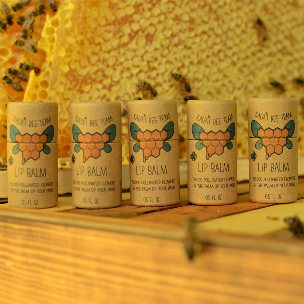 Beeswax Lip Balm Set - Package of 5