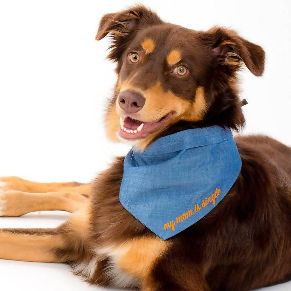 "Load image into Gallery viewer, ""My Mom is Single"" Blue Pet Bandana"