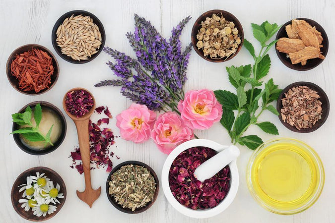 Sykea skincare photo of natural ingredients in bowls for skin care
