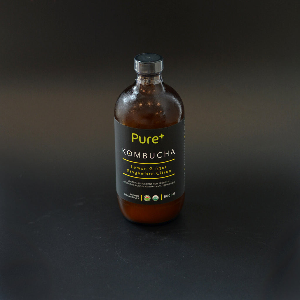 Pure+ Kombucha 500ml