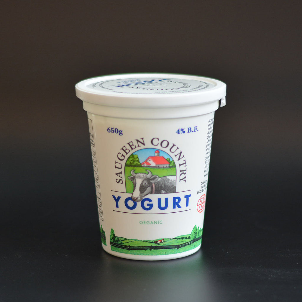 Saugeen County Yogurt 650g