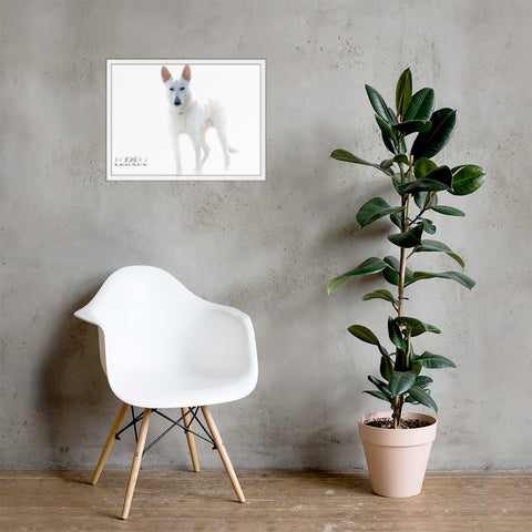 Living room dog poster white frame