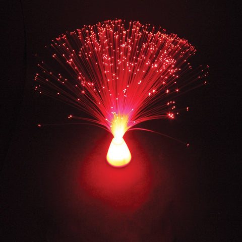 LED Fibre Optic Lamp