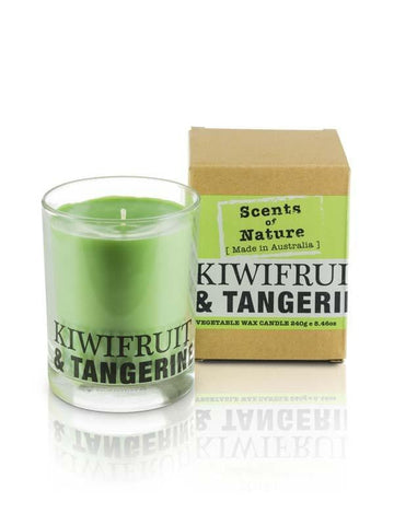 Kiwi And Tangerine 240g Scents of Nature Candle
