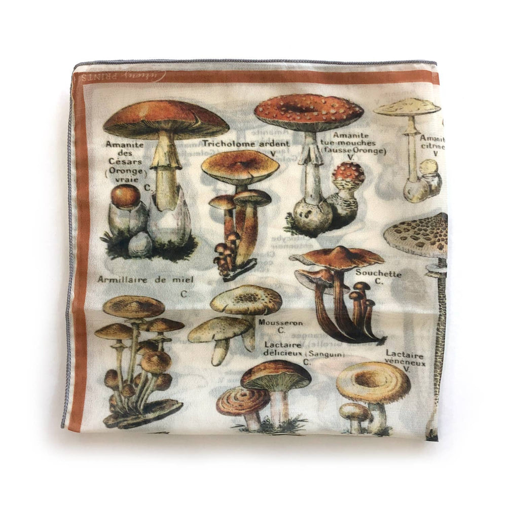 Load image into Gallery viewer, Scarf 100% Silk Vintage French Mushroom Fungi Bandana