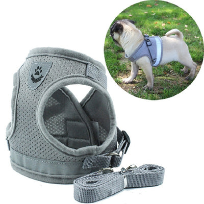 Reflective Safety Dog Harness and Leash