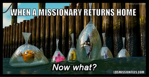 Mormon meme when a missionary returns home now what