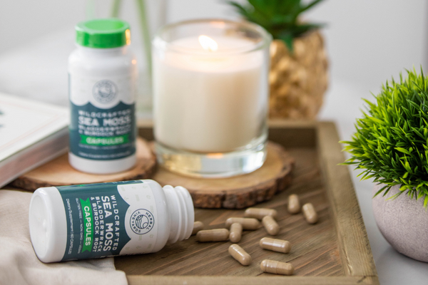 Sea Moss Gel vs. Capsule – What's the Difference?