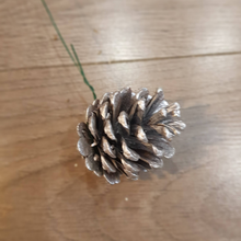 Load image into Gallery viewer, PINE CONES