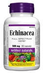 Echinacea, Full Spectrum Herb, 500 mg, 60 capsules