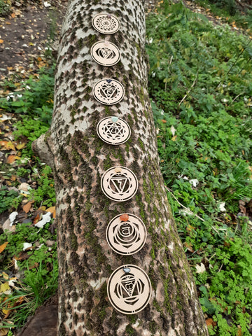 Tree trunk with our wooden chakra symbols on it.