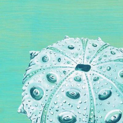 Teal Urchin | Canvas Wall Art-Canvas Wall Art-Jack and Jill Boutique