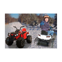 Ride on Quad Protector Schnee