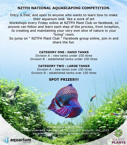NZTFH National Aquascaping Competition | Aquarium Supplies NZ