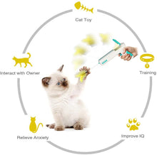 Load image into Gallery viewer, Interactive Cat Toy Gun with 1 Funny Cat Ball and 1 Funny Cat Feather