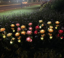 Load image into Gallery viewer, LAST DAY 50% OFF- SPRING ARTIFICIAL ROSE SOLAR GARDEN STAKE LIGHTS