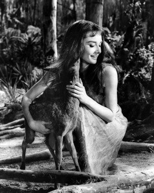 Audrey Hepburn as Rima