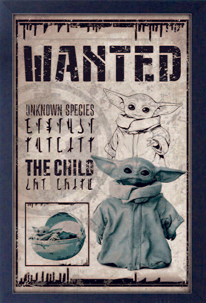 Mandalorian – Child Wanted Baby Yoda