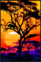 Safari Sunset Blacklight