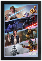 Star Wars - Heroes and Villains Framed Gelcoat