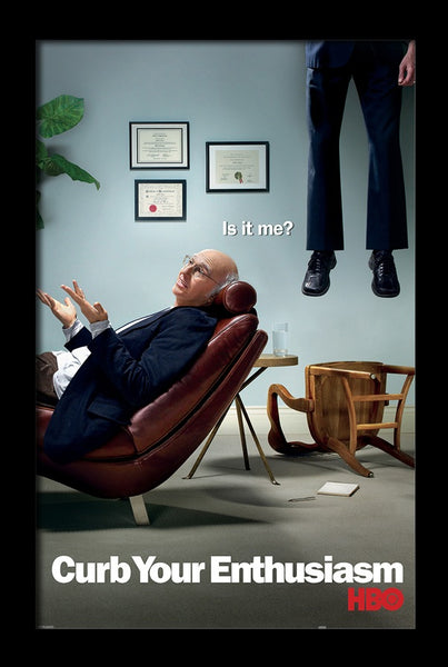 Curb Your Enthusiasm - Is it Me? Framed Gelcoat