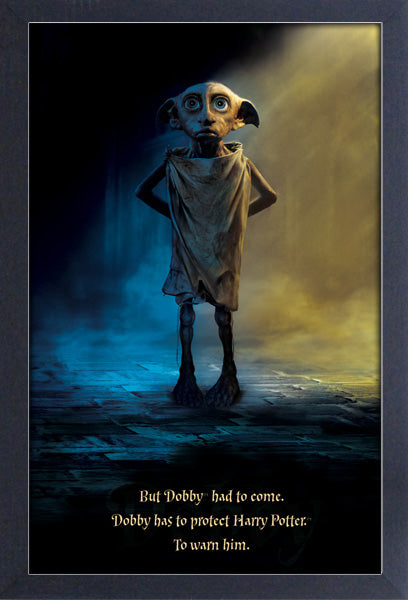 Harry Potter - Dobby Protect Framed Gelcoat