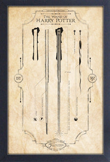 Harry Potter - Wand of Harry Framed Gelcoat