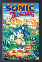 Sonic The Hedgehog 3 Framed Gelcoat