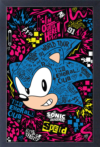 Sonic The Hedgehog Emerald Club Framed Gelcoat