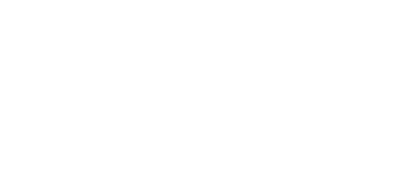 Wellis Air logo